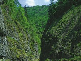 NP Vápencové Alpy