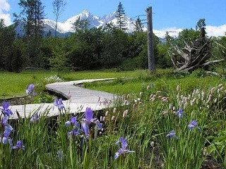 Botanická záhrada TANAP