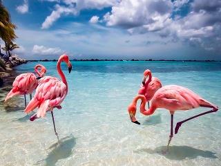 Aruba – najromantickejší z