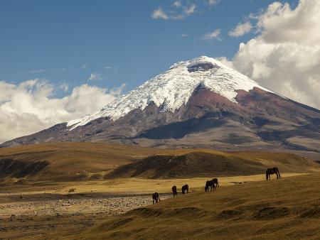 Sopka Cotopaxi