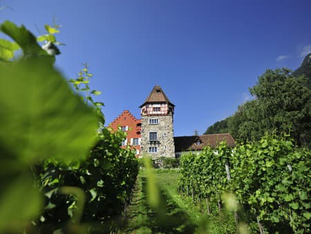 Červený dom, Vaduz