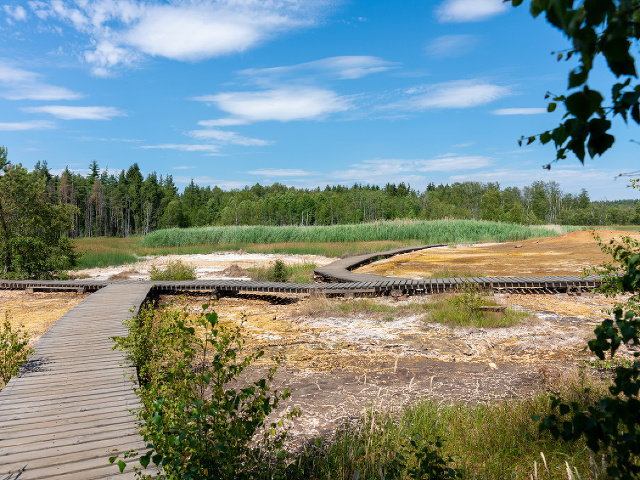 Národná prírodná rezervácia Soos