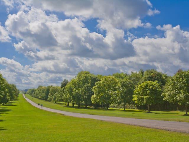 Aleja Dlhá prechádzka, Windsor