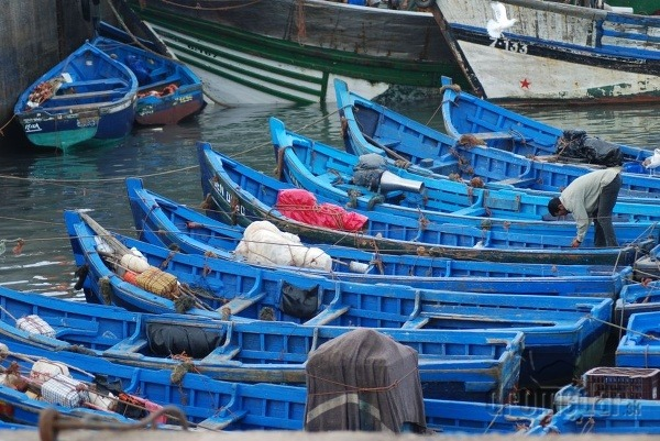 Člny na rybolov, Essaouira