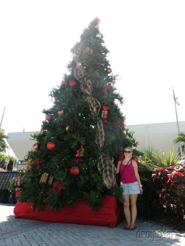 Vianoce na Kajmanských ostrovoch