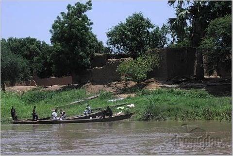 Riekacha Chari, Čad