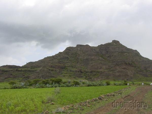 Eritrejská vysočina