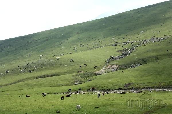 Údolia plné voľne sa
