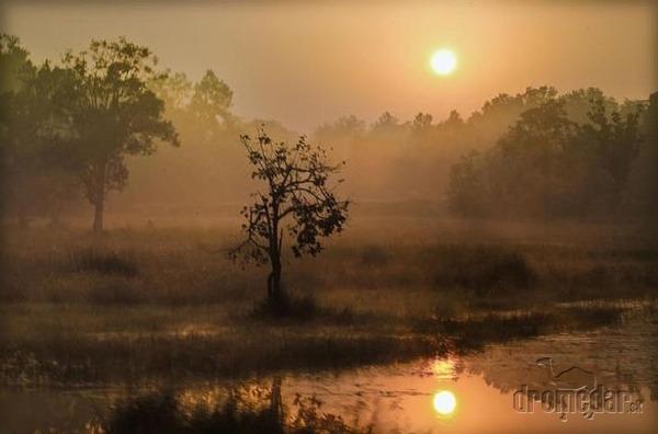 Národný park Kanha, India