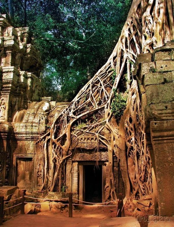 Chrám Ta Phrom sme
