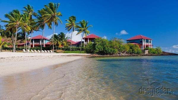 Martinik je kus Francúzska