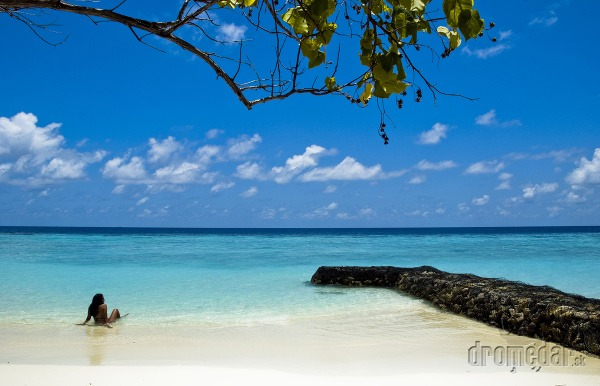 Maldivy