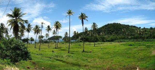 Dominiky lemujú krásne pláže,