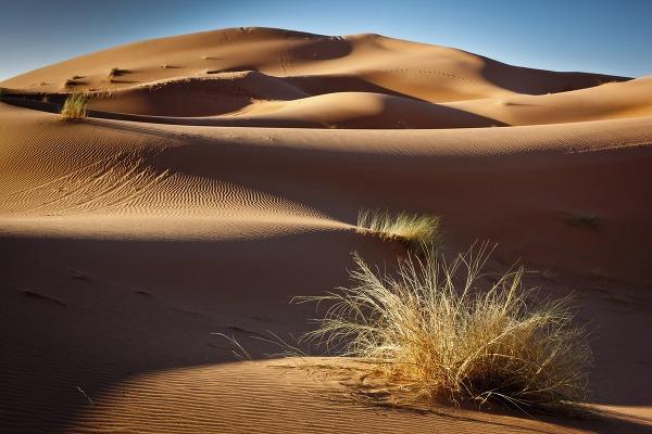 Duna Erg Chebbi, Maroko