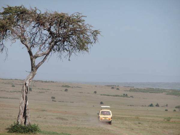 Na safari stretnete aj