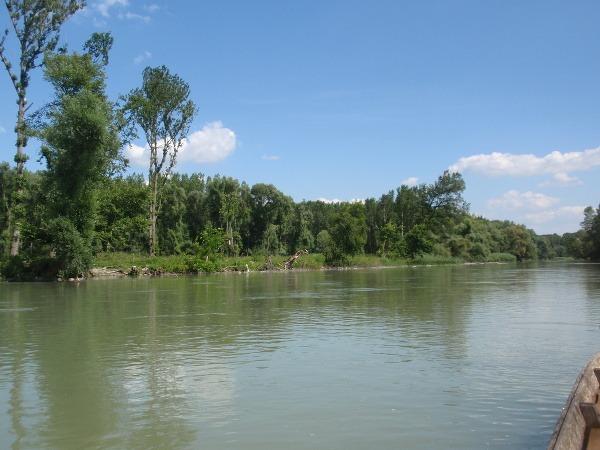 Rameno Dunaja pri Lipóte