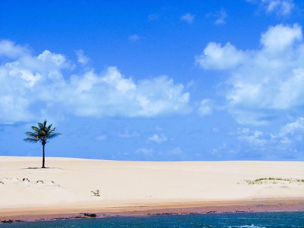 Alagoas, Brazília