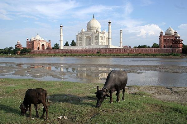 Tadž Mahal, India
