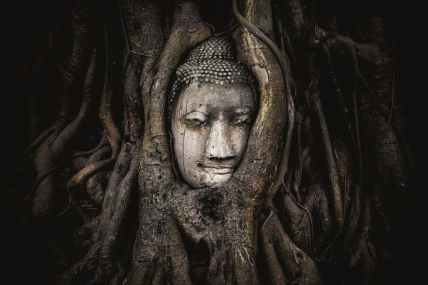 Pieskovcová hlava Budhu