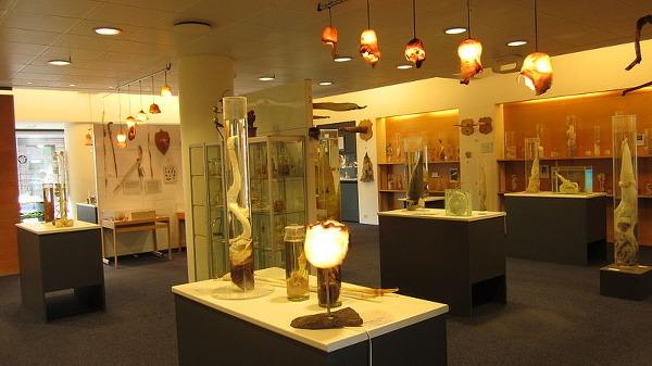 Múzeum penisov, Reykjavík, Island