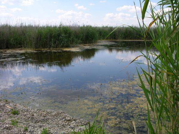 Nevšedné zákutia slovenskej prírody: