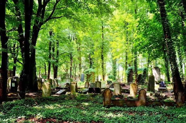 Vroclav je najstarším poľským