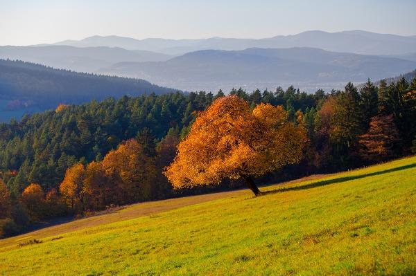Neprekonateľná slovenská príroda v