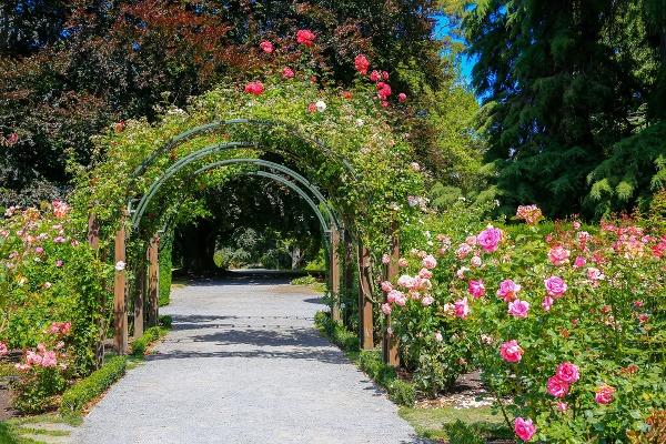 Botanické záhrady sú ako