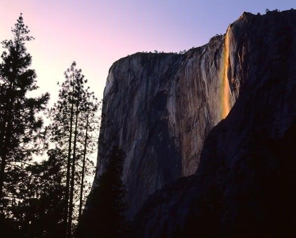 Fantastická hra prírody: Kalifornský
