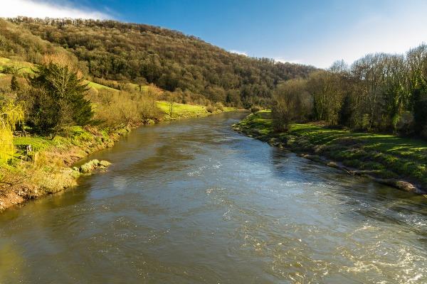 Rieka Wye