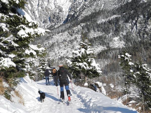 Skialpinizmus je čoraz populárnejší,