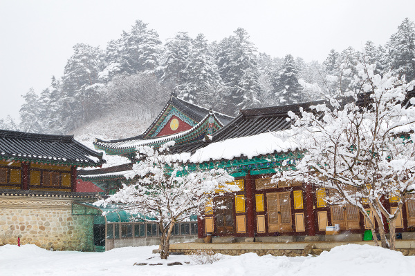Chrám Woljeongsa, Južná Kórea