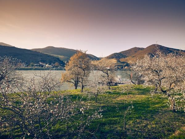Jar v Dolnom Rakúsku: