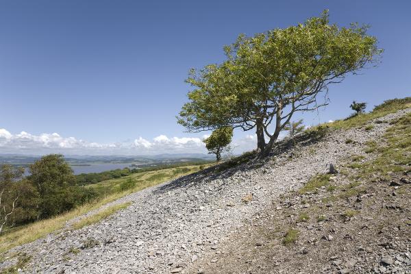 Arnside Knott, Cumbria, Veľká