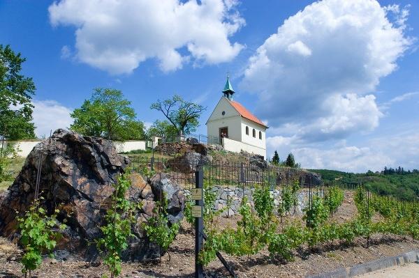 Botanická záhrada, Praha, Česká