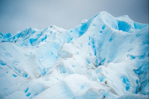 Neskrotná Arktída