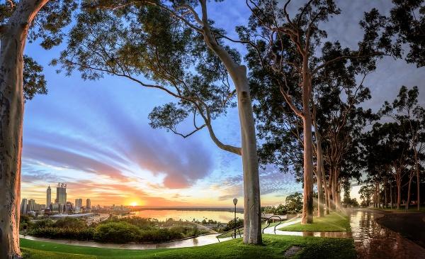 Kings Park, Perth, Austrália
