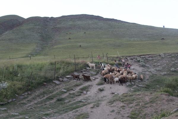 Chinalik a región Guba,