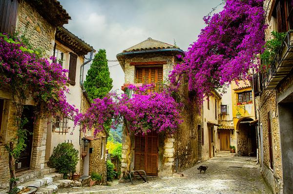 Provensálsko, Francúzsko
