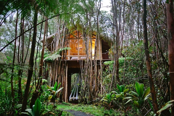 Tropický domček na strome,