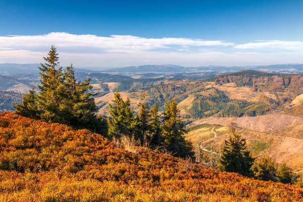 Jesenné lesy na Kysuciach
