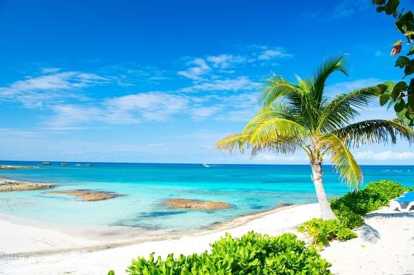 Ostrov Ocean Bay –