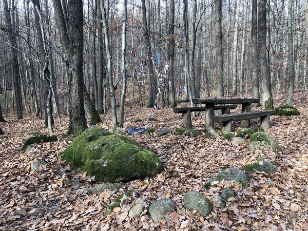 Raslavkameň v lese nad