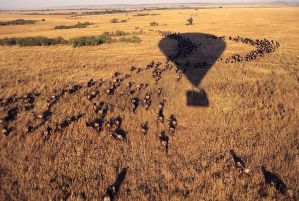 Maasai Mara, Keňa