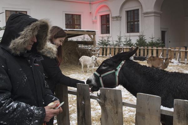 Advent na Hrade, Bratislava