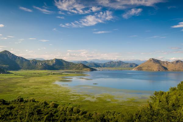 Skadarské jazero, Albánsko