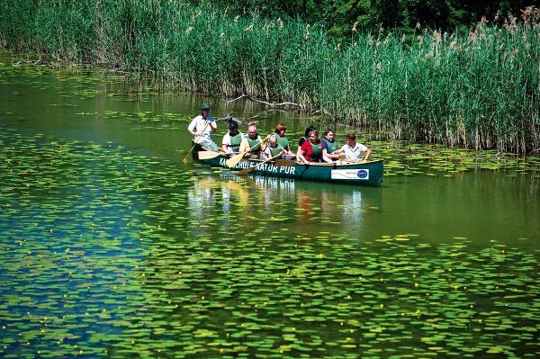 Národný park Donau-Auen (Dunajské