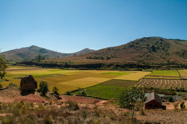 Madagaskarský vidiek