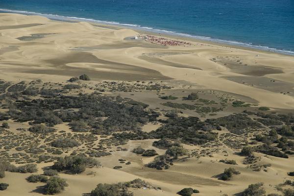 Playa del Inglés, Gran