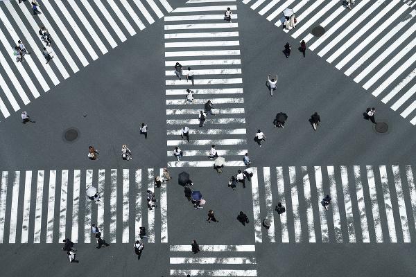 Pruhovaný svet Tokia